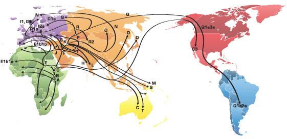 Mapa_HaploGrupo